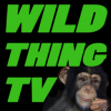 WildthingTV